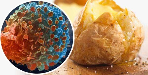 Không muốn bị ung thư thì tốt nhất đừng cho khoai tây vào tủ lạnh!