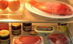 Vì sao thực phẩm để trong tủ lạnh vẫn bị hư hỏng?